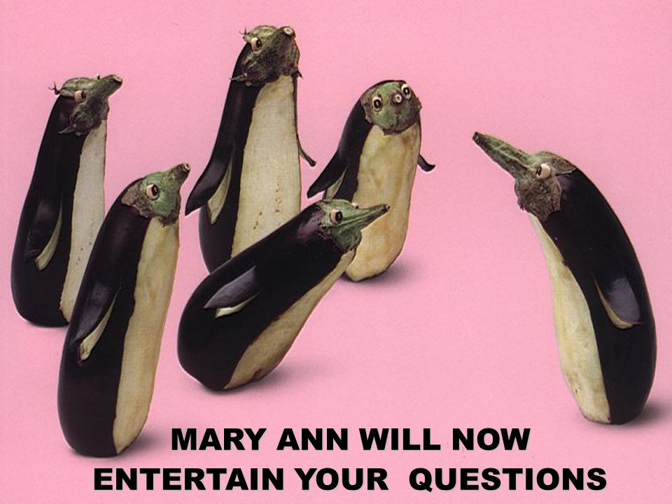 MARY ANN WILL NOW ENTERTAIN YOUR QUESTIONS