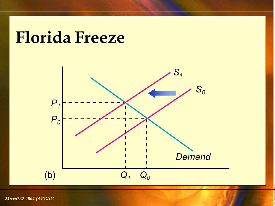 Micro232 2004 JAFGAC Florida Freeze Demand S0S0 (b) P1P1 Q1Q1 P0P0 Q0Q0 S1S1
