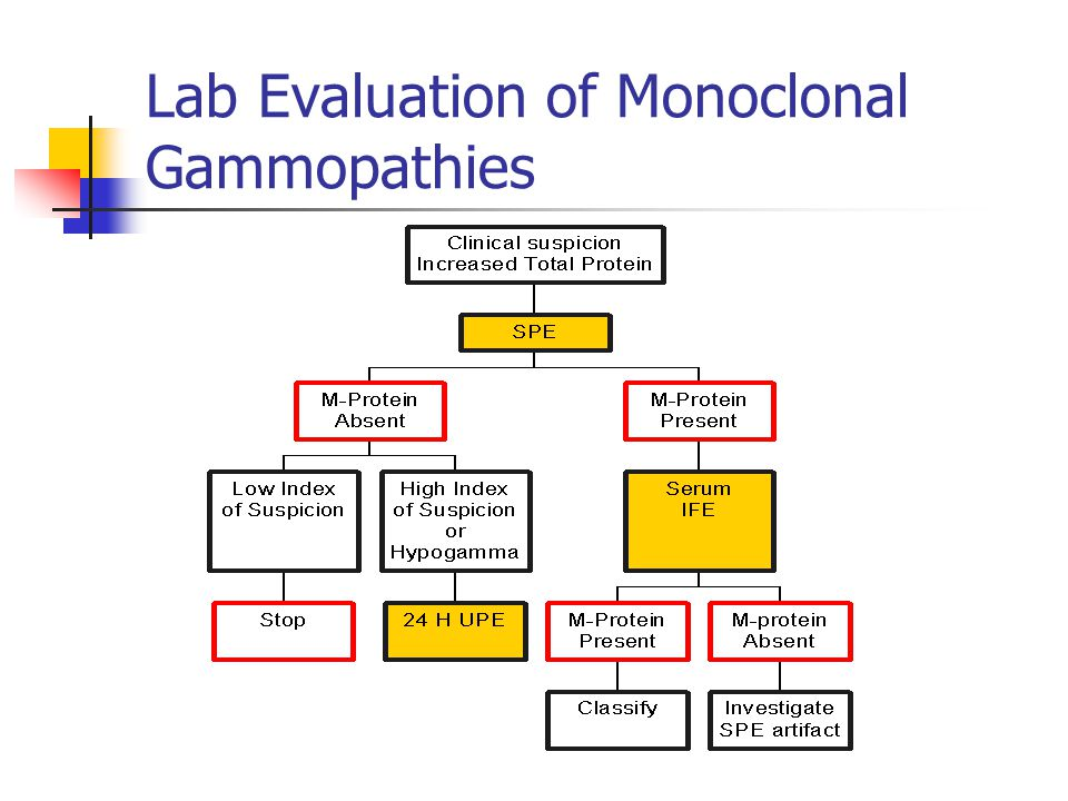 Lab Evaluation of Monoclonal Gammopathies