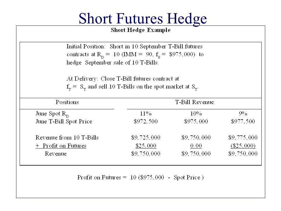 Short Futures Hedge