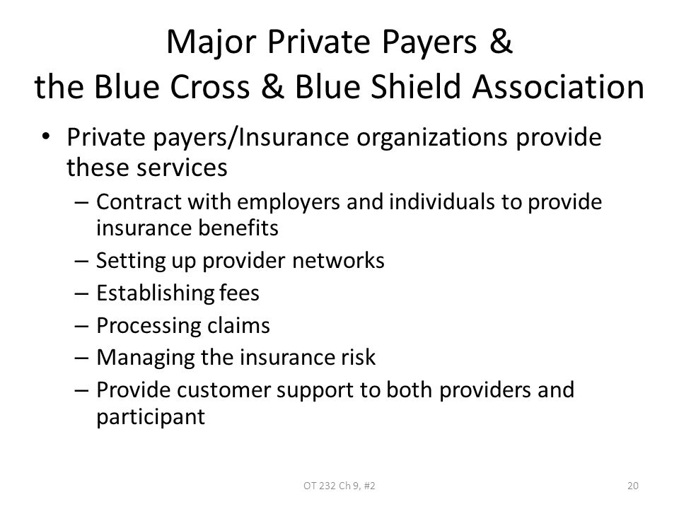 Major Private Payers & the Blue Cross & Blue Shield Association Private payers/Insurance organizations provide these services – Contract with employer