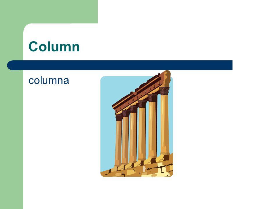 Column columna