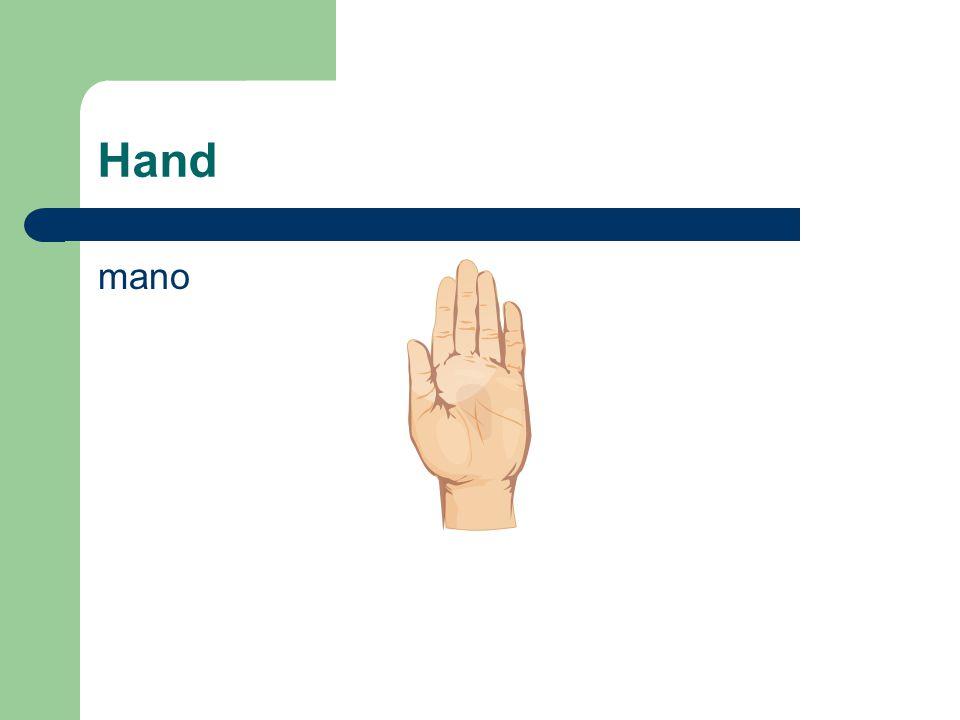 Hand mano
