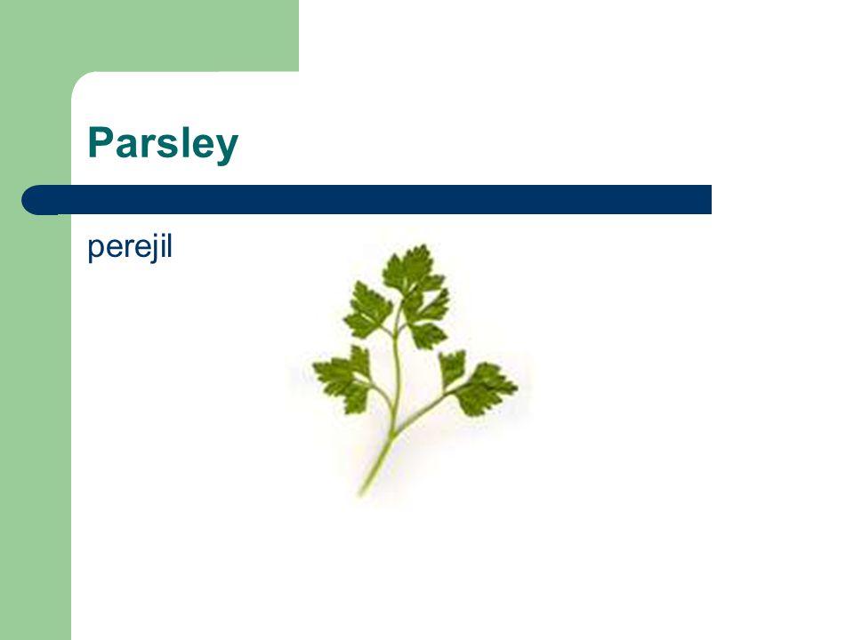 Parsley perejil