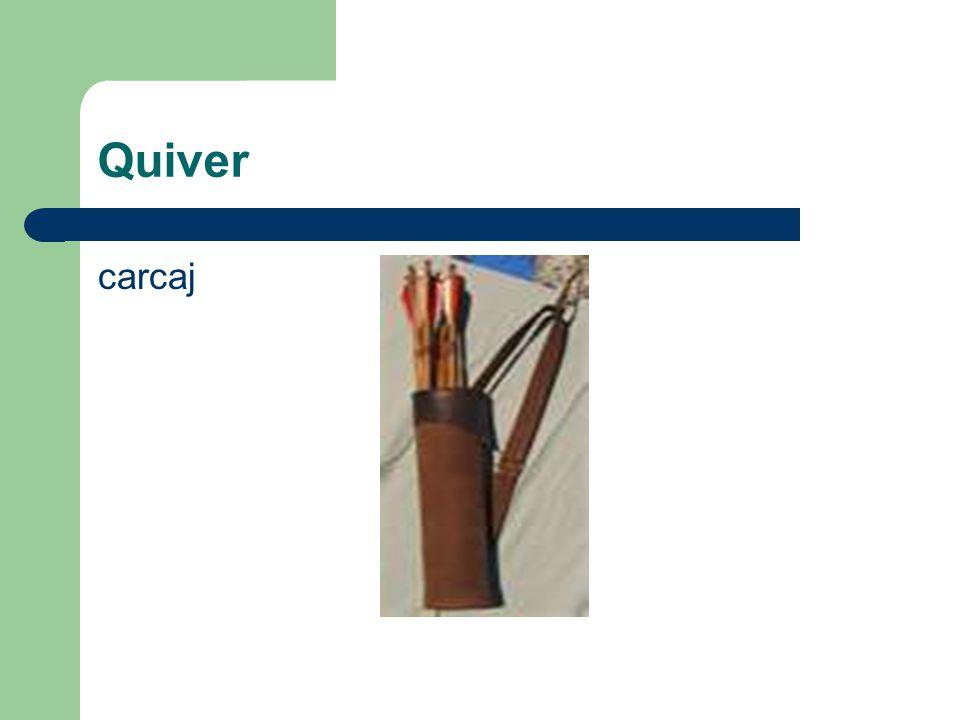 Quiver carcaj
