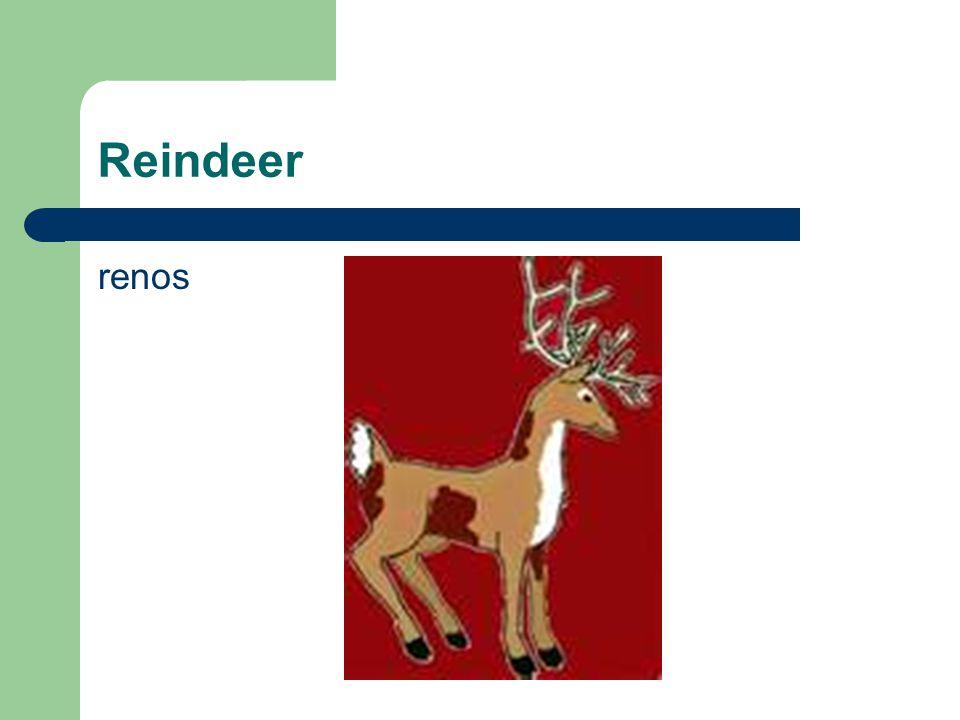 Reindeer renos
