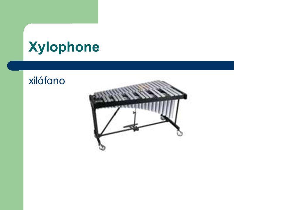 Xylophone xilófono