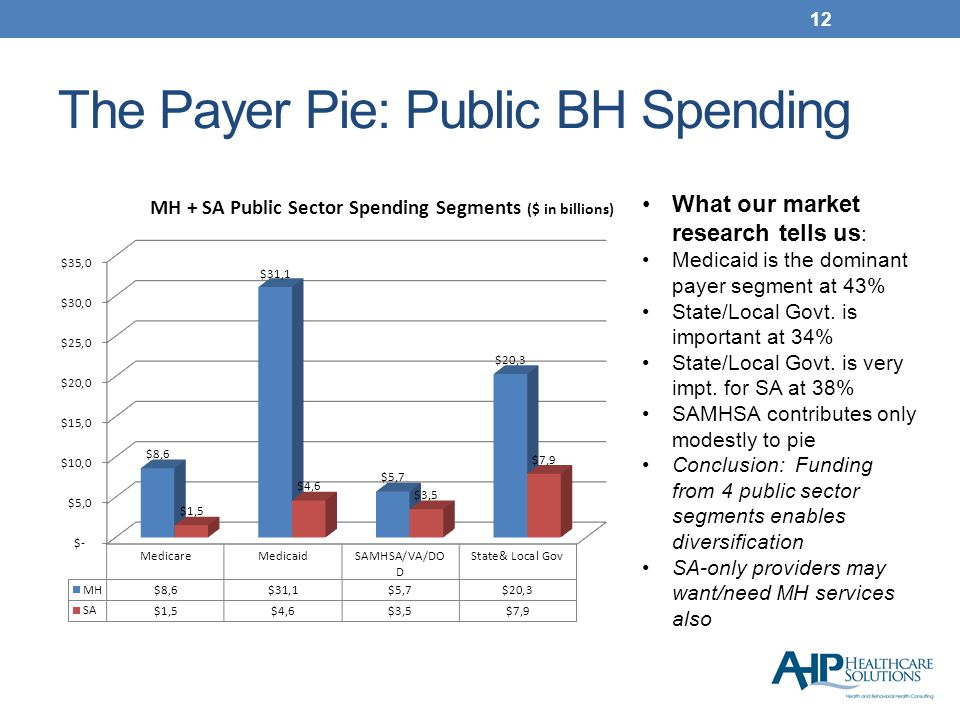 The Payer Pie: Public BH Spending 12 What our market research tells us : Medicaid is the dominant payer segment at 43% State/Local Govt.