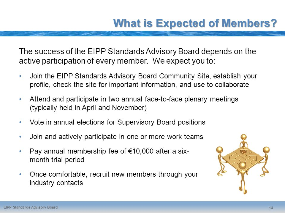 EIPP Standards Advisory Board 14 What is Expected of Members.