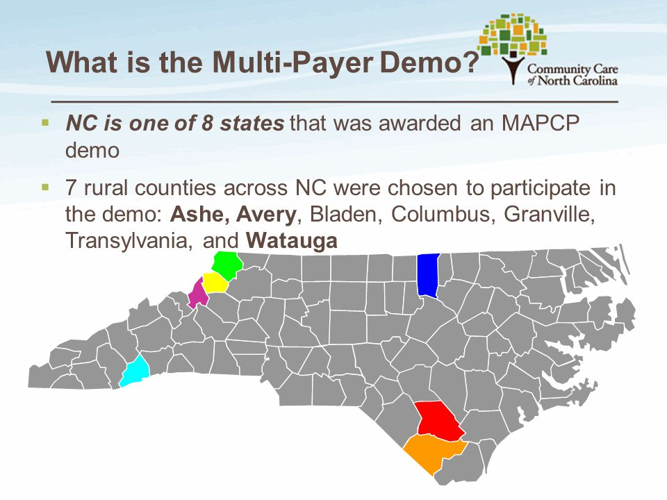 What is the Multi-Payer Demo.