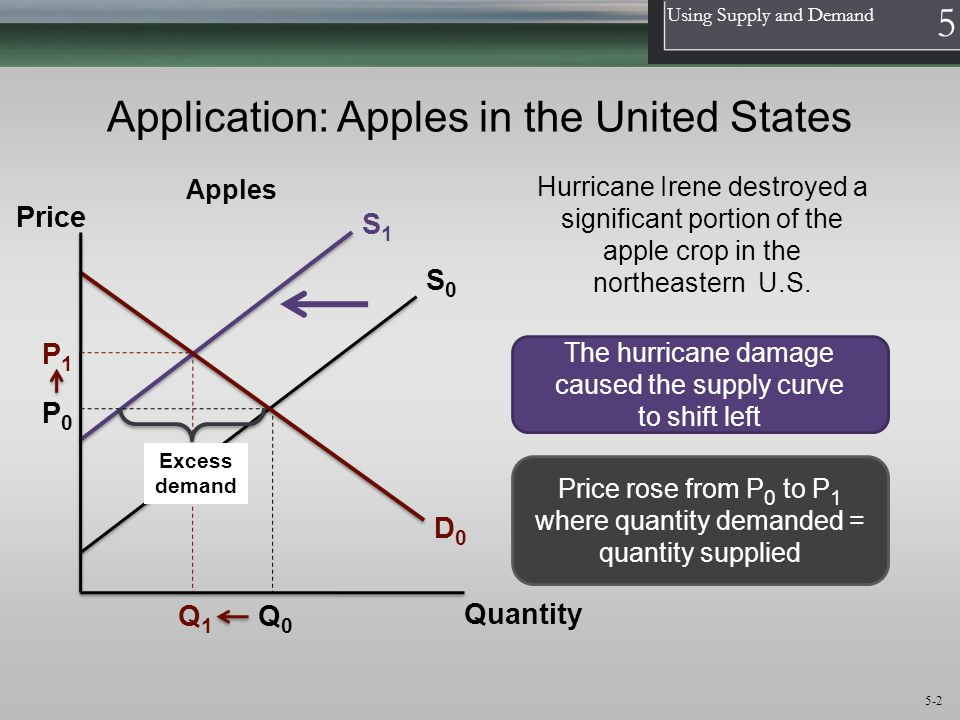 1 Using Supply and Demand 5 5-2 Application: Apples in the United States D0D0 Quantity The hurricane damage caused the supply curve to shift left Hurr