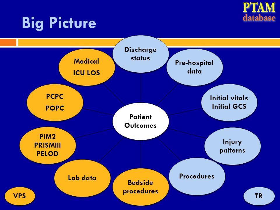 Big Picture TRVPS Patient Outcomes Discharge status Pre-hospital data Initial vitals Initial GCS Injury patterns Procedures Bedside procedures Lab dat