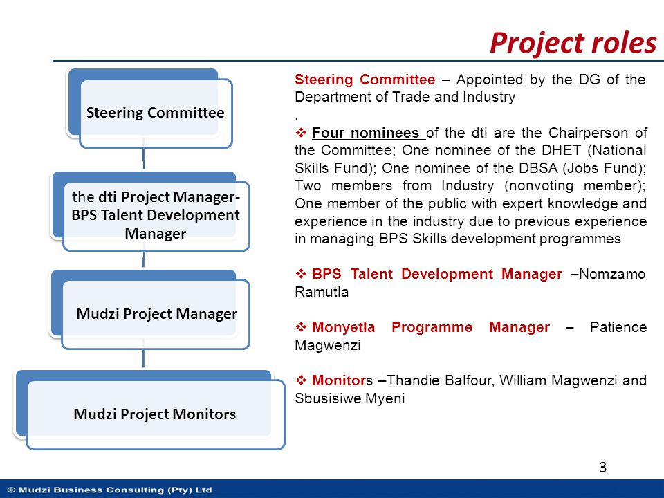 Project roles Steering Committee the dti Project Manager- BPS Talent Development Manager Mudzi Project ManagerMudzi Project Monitors 3 Steering Commit