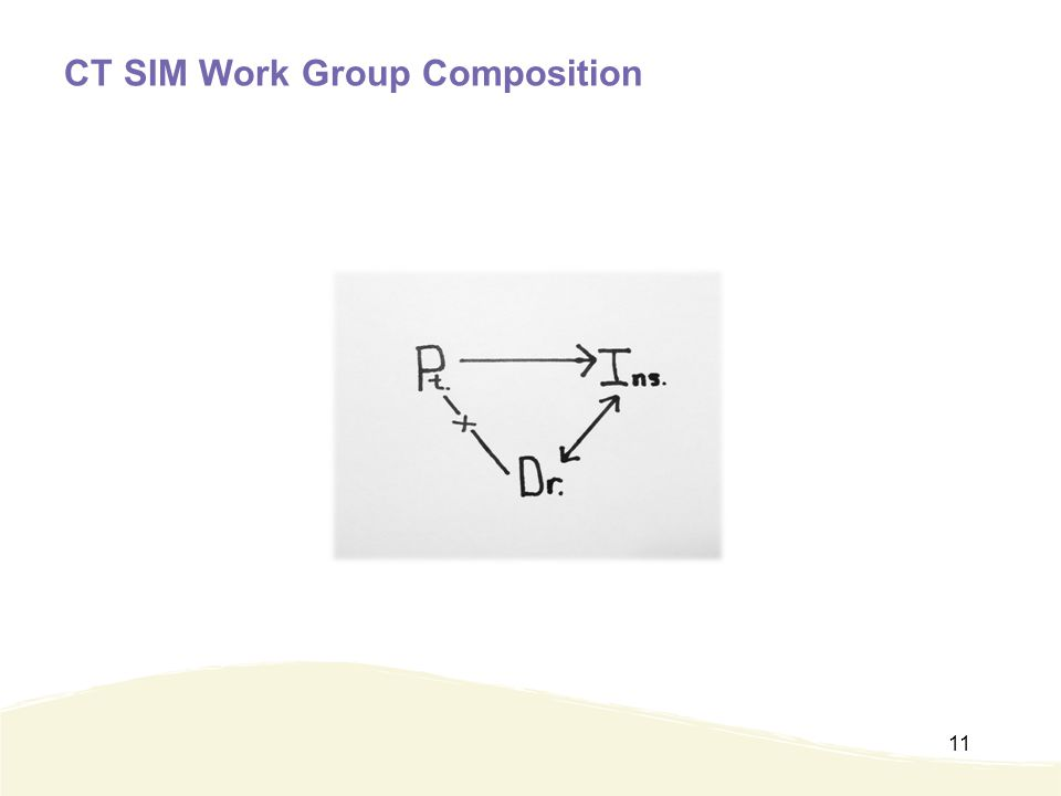 CT SIM Work Group Composition 11