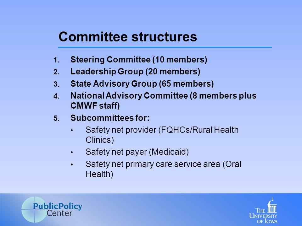 1. Steering Committee (10 members) 2. Leadership Group (20 members) 3.