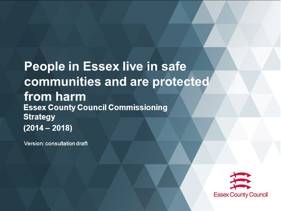 Links to existing strategies and plans This Strategy also recognises that there are important links to key existing ECC and partner strategies and plans, as follows SafeguardingCrime and SafetyRoad safety Children, Young People and Families Partnership Plan (CYPFPP) 2013-2016 ECC Domestic Abuse Strategy Essex Safeguarding Adults Board Business Plan 2013-15 Essex Safeguarding Childrens Board – Priorities ECC Placement Strategy Joint Health and Wellbeing Strategy for Essex 2013-2018.