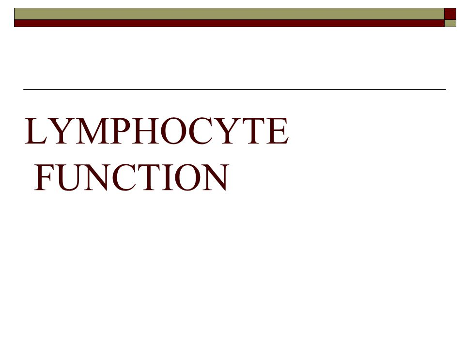LYMPHOCYTE FUNCTION
