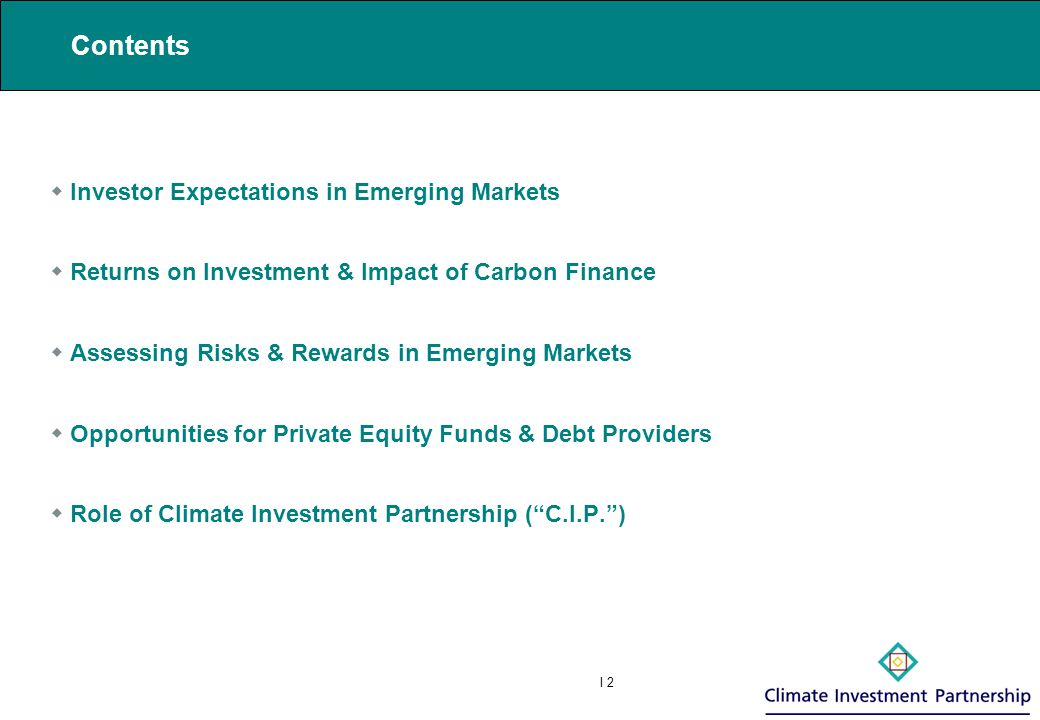 I 3 1 Investor Expectations in Emerging Markets