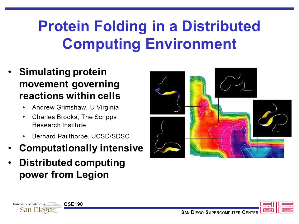 S AN D IEGO S UPERCOMPUTER C ENTER CSE190 Protein Folding in a Distributed Computing Environment Simulating protein movement governing reactions within cells Andrew Grimshaw, U Virginia Charles Brooks, The Scripps Research Institute Bernard Pailthorpe, UCSD/SDSC Computationally intensive Distributed computing power from Legion