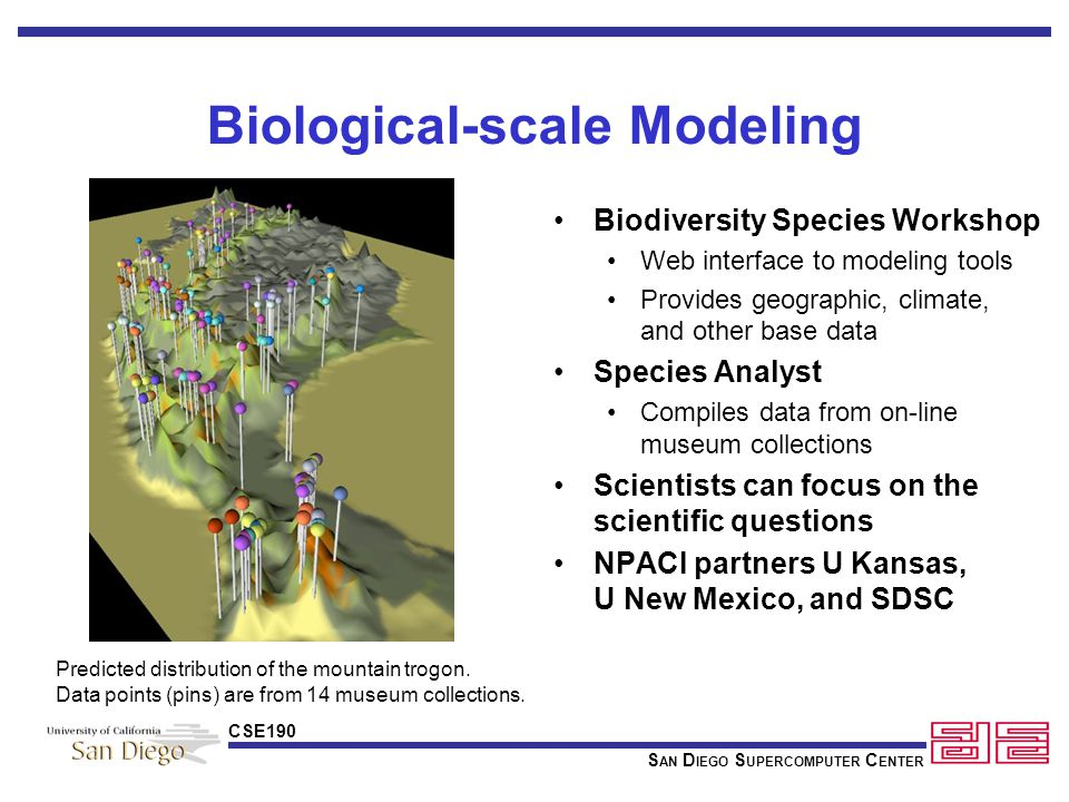 S AN D IEGO S UPERCOMPUTER C ENTER CSE190 Biodiversity Species Workshop Web interface to modeling tools Provides geographic, climate, and other base data Species Analyst Compiles data from on-line museum collections Scientists can focus on the scientific questions NPACI partners U Kansas, U New Mexico, and SDSC Biological-scale Modeling Predicted distribution of the mountain trogon.