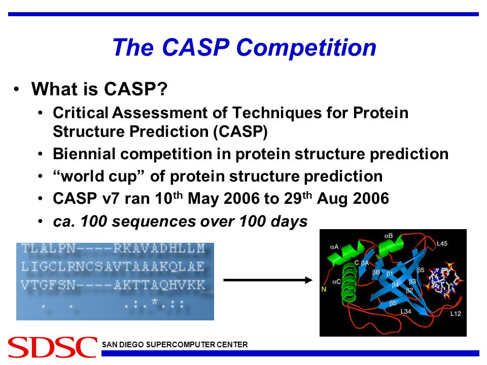 SAN DIEGO SUPERCOMPUTER CENTER The CASP Competition What is CASP.