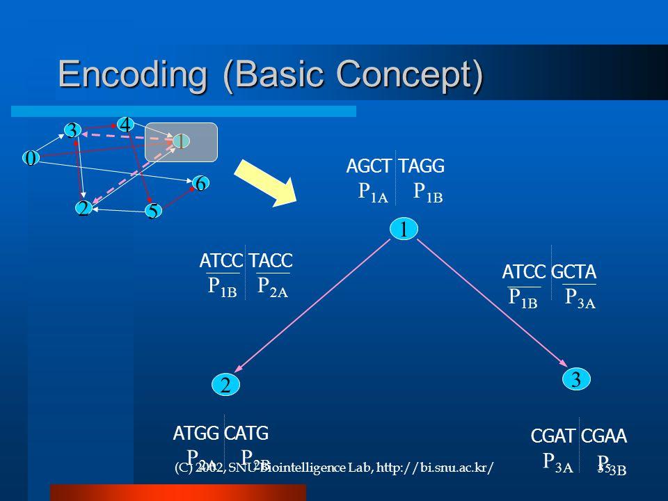(C) 2002, SNU Biointelligence Lab, http://bi.snu.ac.kr/35 Encoding (Basic Concept) 1 3 2 AGCT TAGG P 1A P 1B ATGG CATG P 2A P 2B CGAT CGAA P 3A P 3B P 1B P 3A P 1B P 2A 1 0 3 2 5 6 4 ATCC TACC ATCC GCTA