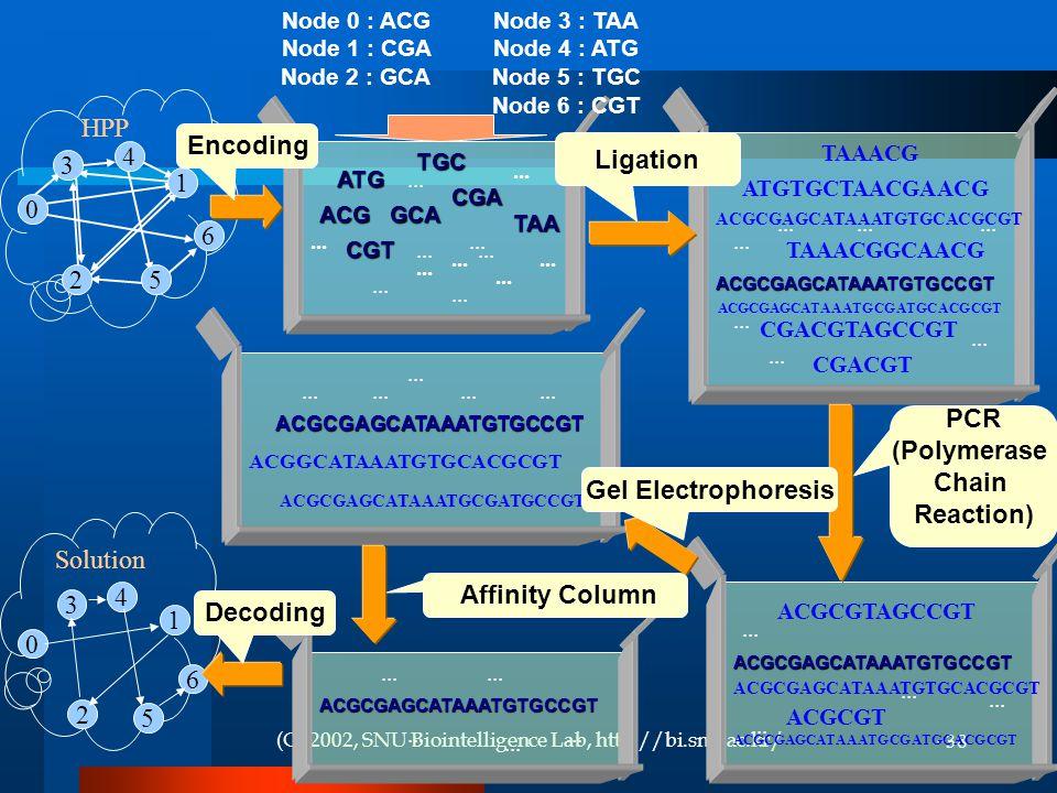 (C) 2002, SNU Biointelligence Lab, http://bi.snu.ac.kr/38 HPP...