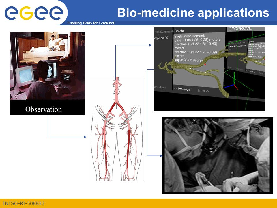 Enabling Grids for E-sciencE INFSO-RI-508833 Bio-medicine applications