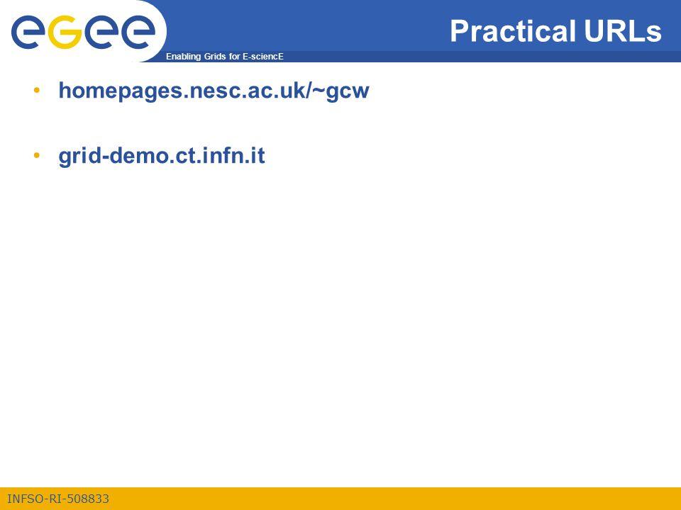 Enabling Grids for E-sciencE INFSO-RI-508833 Practical URLs homepages.nesc.ac.uk/~gcw grid-demo.ct.infn.it