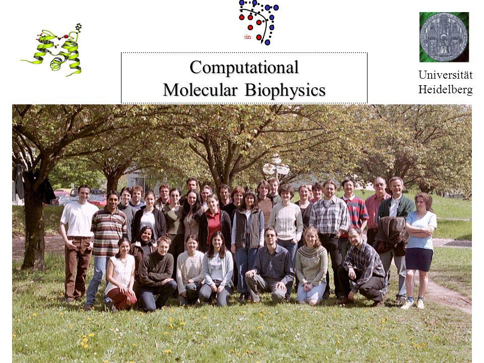 Universität Heidelberg Protein Computational Molecular Biophysics