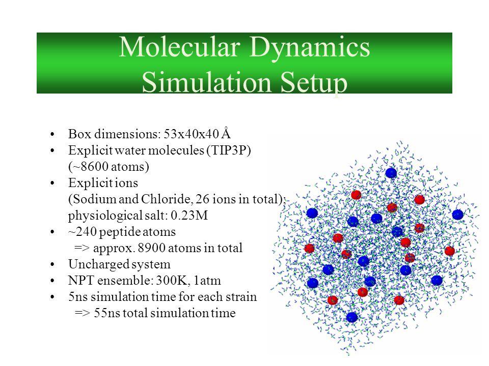 Molecular Dynamics Simulation Setup Box dimensions: 53x40x40 Ǻ Explicit water molecules (TIP3P) (~8600 atoms) Explicit ions (Sodium and Chloride, 26 i