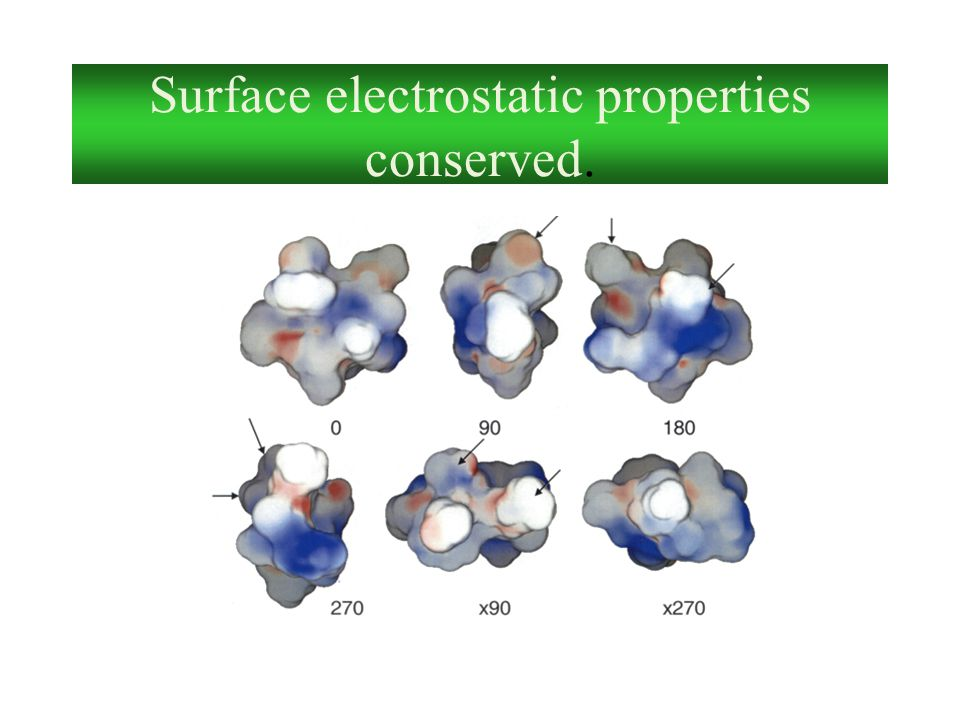 Surface electrostatic properties conserved.