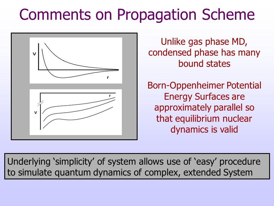 Comments on Propagation Scheme Underlying 'simplicity' of system allows use of 'easy' procedure to simulate quantum dynamics of complex, extended Syst