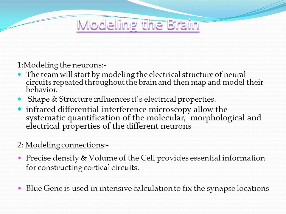 Modeling the Brain 1:Modeling the neurons:- The team will start by modeling the electrical structure of neural circuits repeated throughout the brain