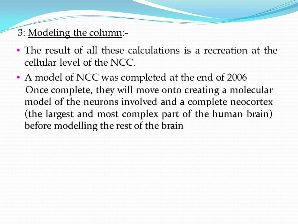 3: Modeling the column:- The result of all these calculations is a recreation at the cellular level of the NCC. A model of NCC was completed at the en
