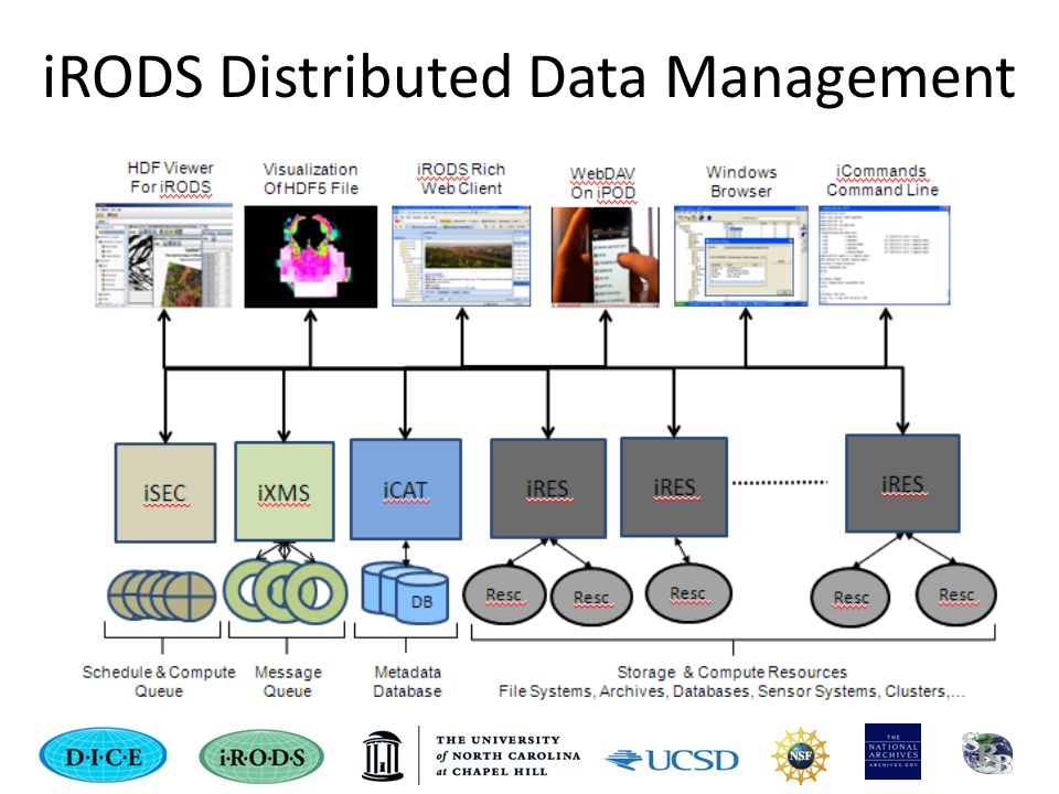 iRODS Distributed Data Management