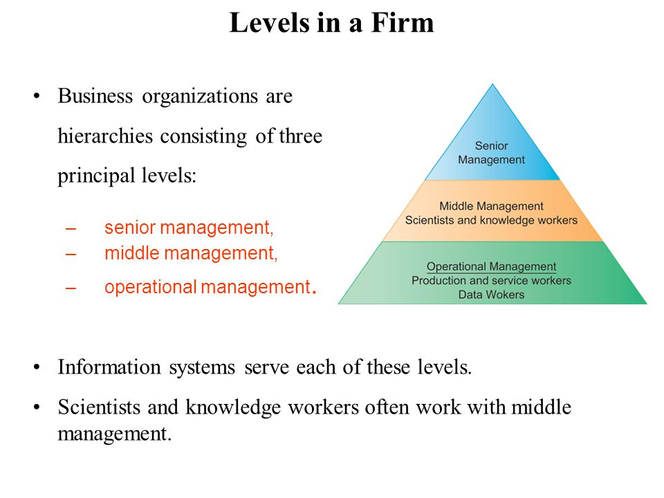 Separation of business functions –Sales and marketing –Human resources –Finance and accounting –Manufacturing and production Unique business processes Unique business culture Organizational politics Organizational dimension of information systems