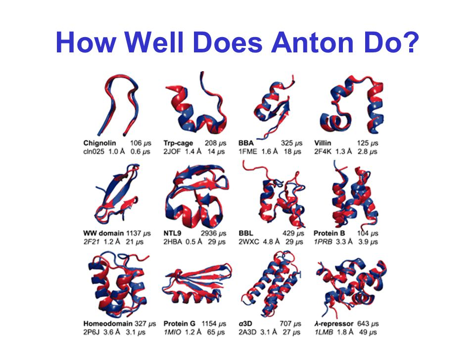 How Well Does Anton Do