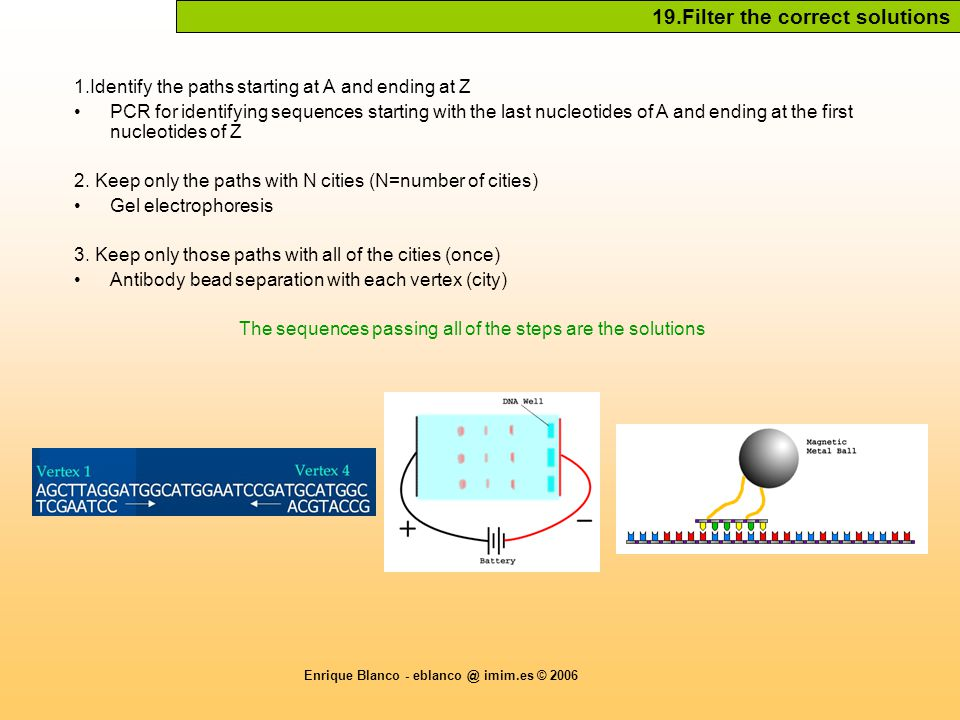 Enrique Blanco - eblanco @ imim.es © 2006 19.Filter the correct solutions 1.Identify the paths starting at A and ending at Z PCR for identifying sequences starting with the last nucleotides of A and ending at the first nucleotides of Z 2.