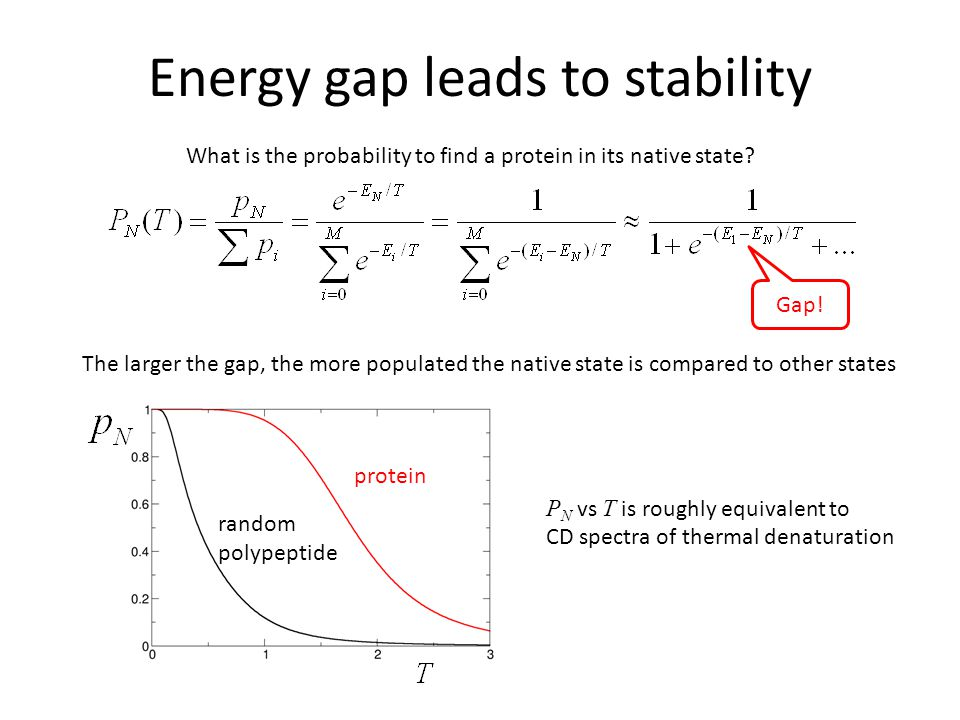 Energy gap leads to stability What is the probability to find a protein in its native state.