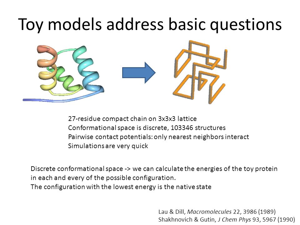 Toy models address basic questions 27-residue compact chain on 3x3x3 lattice Conformational space is discrete, 103346 structures Pairwise contact potentials: only nearest neighbors interact Simulations are very quick Lau & Dill, Macromolecules 22, 3986 (1989) Shakhnovich & Gutin, J Chem Phys 93, 5967 (1990) Discrete conformational space -> we can calculate the energies of the toy protein in each and every of the possible configuration.