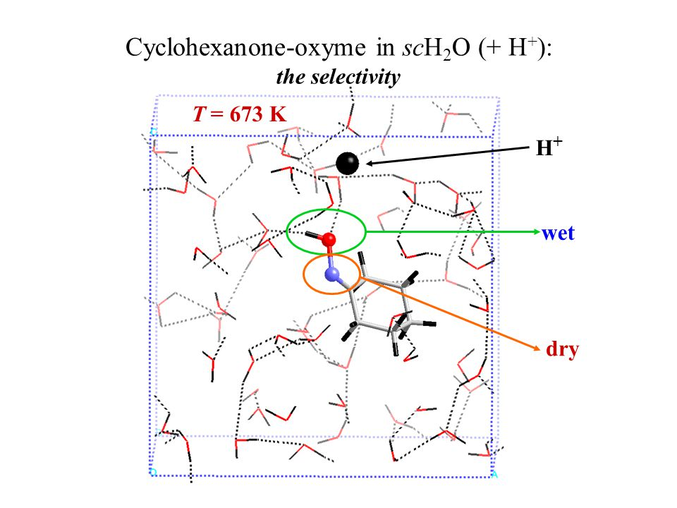 H+H+ T = 673 K wet dry Cyclohexanone-oxyme in scH 2 O (+ H + ): the selectivity