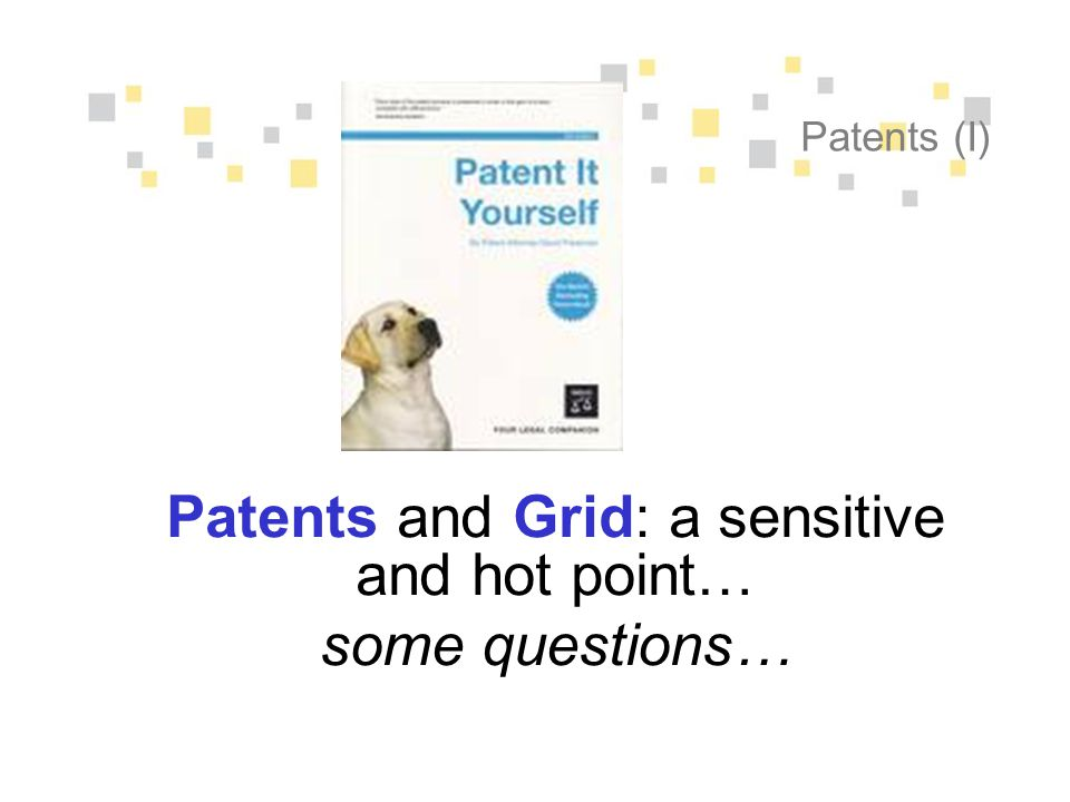 Patents (I) Patents and Grid: a sensitive and hot point… some questions…