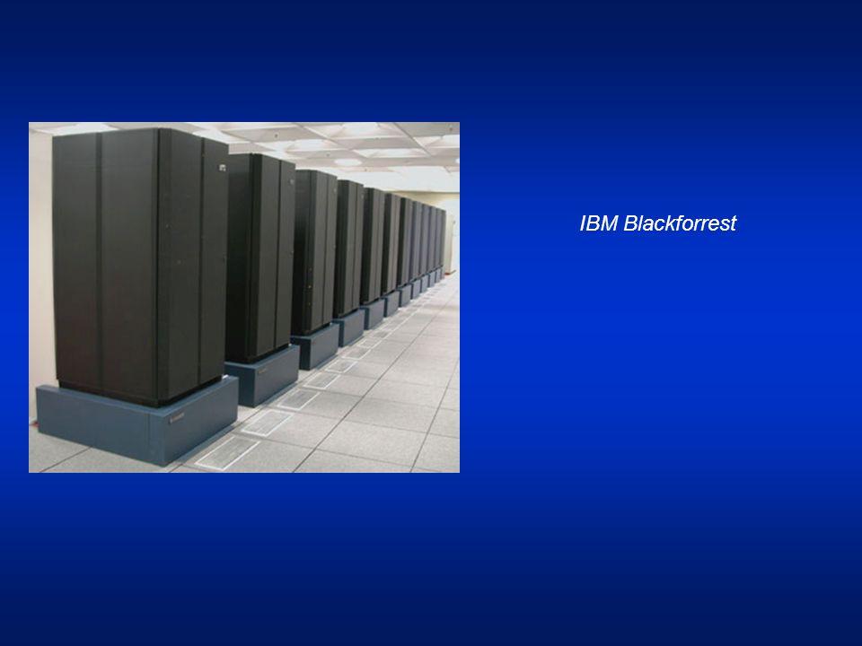 IBM Blackforrest