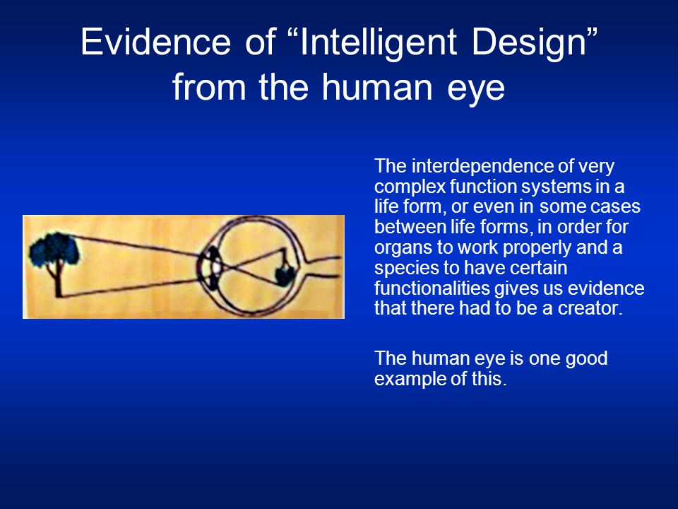 "Evidence of ""Intelligent Design"" from the human eye The interdependence of very complex function systems in a life form, or even in some cases between"
