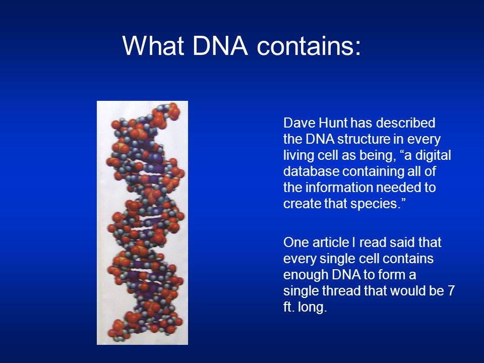 "What DNA contains: Dave Hunt has described the DNA structure in every living cell as being, ""a digital database containing all of the information need"