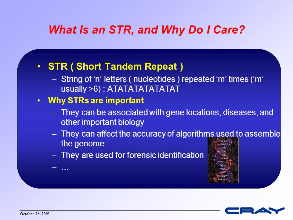 October 26, 2001 What Is an STR, and Why Do I Care? STR ( Short Tandem Repeat ) –String of 'n' letters ( nucleotides ) repeated 'm' times ('m' usually