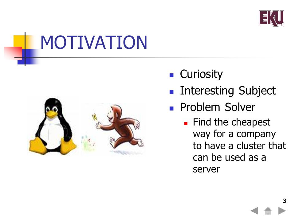 3 MOTIVATION Curiosity Interesting Subject Problem Solver Find the cheapest way for a company to have a cluster that can be used as a server
