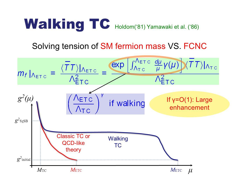 Walking TC Holdom('81) Yamawaki et al. ('86) Solving tension of SM fermion mass VS. FCNC μ M ETC g 2 (μ) g 2 SχSB M TC g 2 initial Classic TC or QCD-l