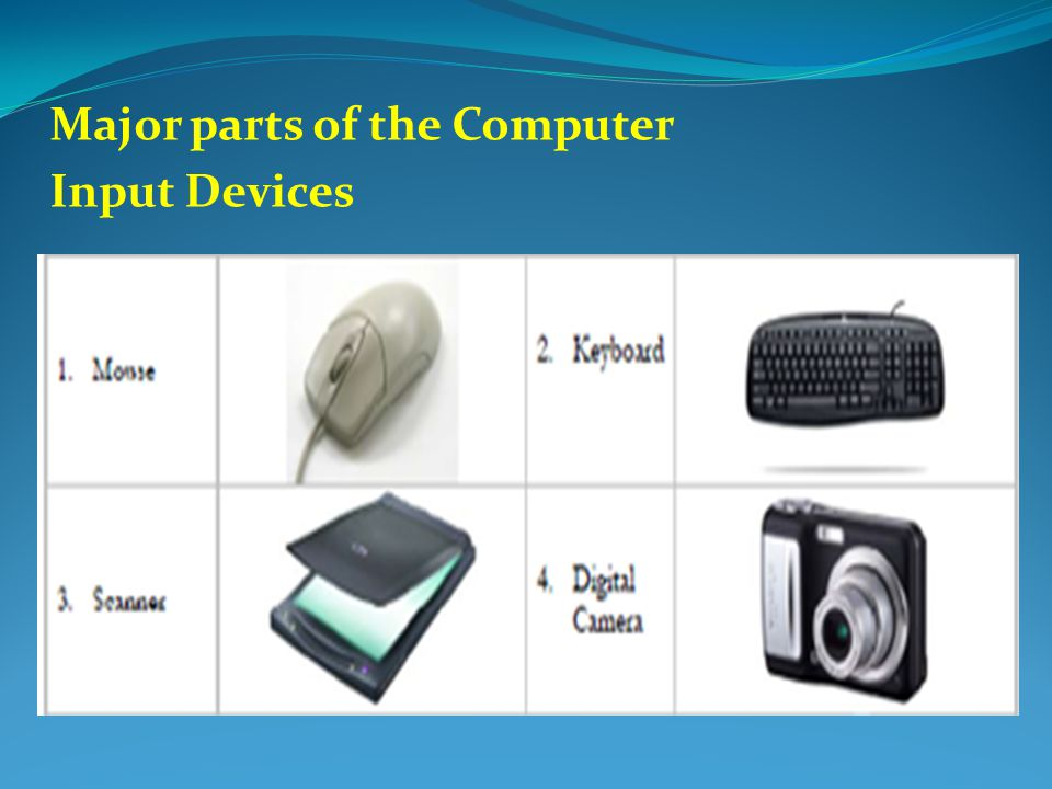5  Input devices.